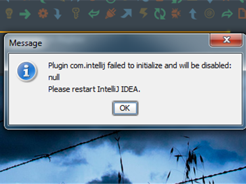 Plugin com.intellij failed to initialize and will be disabled: null